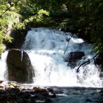 Springer Creek Falls